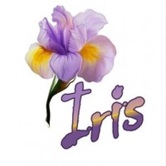 Цветочный Дом Ирис