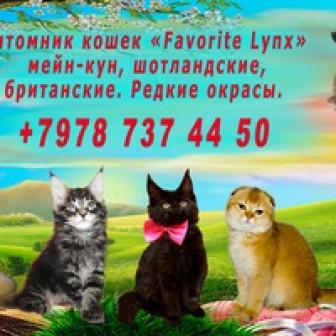 Юлия Войцеховская Питомник