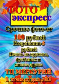 Елена Михачёва Копицентр