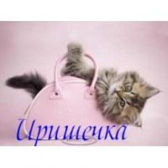 Климкина Ирина